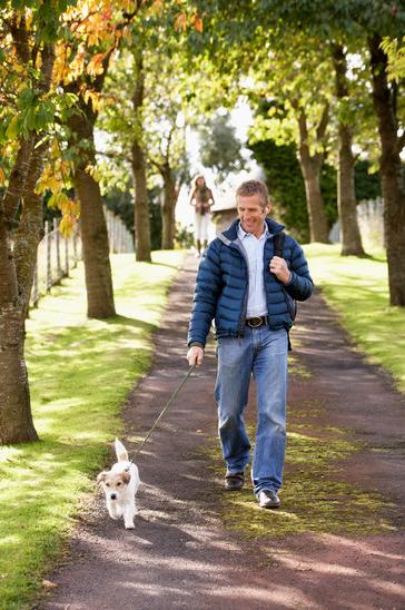 Exercise - dog walking